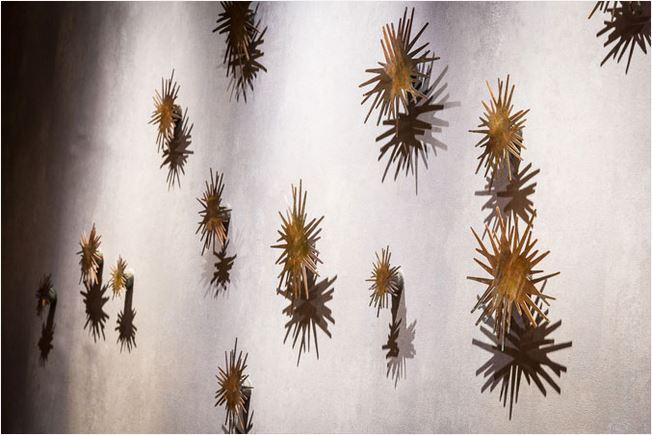 urchin 1