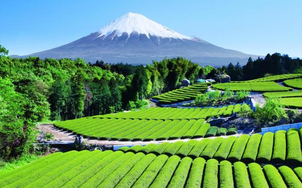 Gunung Fiji Jepang