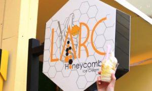 Kenalan Yuk Dengan LARC Honeycomb Icecream