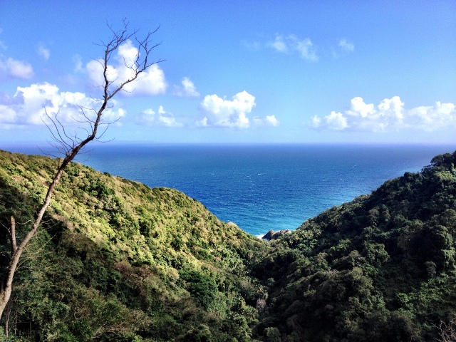 View-from-the-Waitukubuli-trail-Dominica-Double-Barrelled-Travel